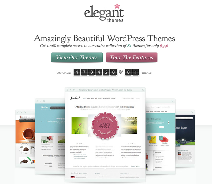 website of elegantthemes